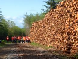 harvesting event, Ballyfoyle, Kilkenny